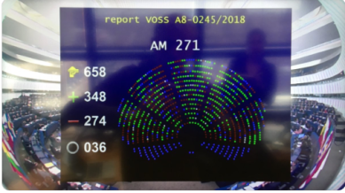 Final Vote Article 13